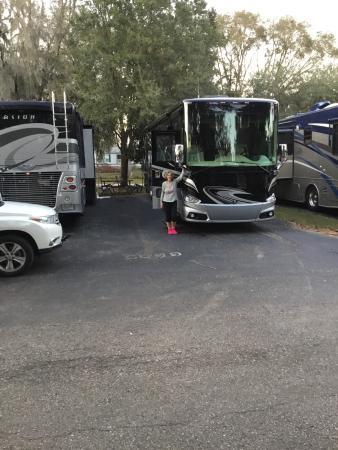 Seffner, FL: photo0.jpg