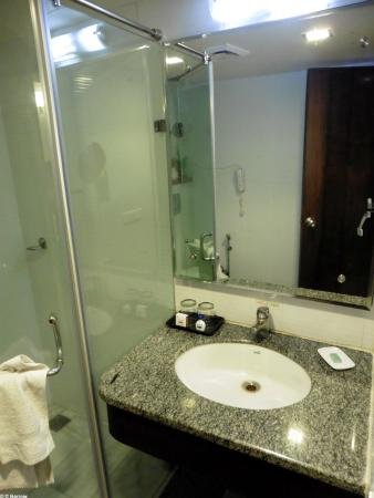 Hotel Taj Resorts: Another view of the washbasin by the shower