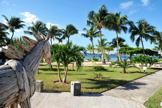 Baie Nettle, St. Maarten: Other