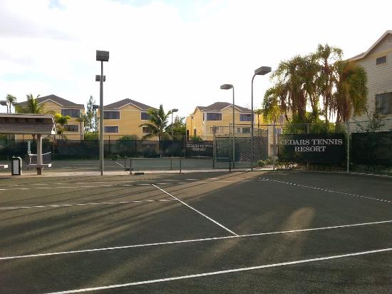Longboat Key, Floride : Clay courts at the Cedars Tennis Resort
