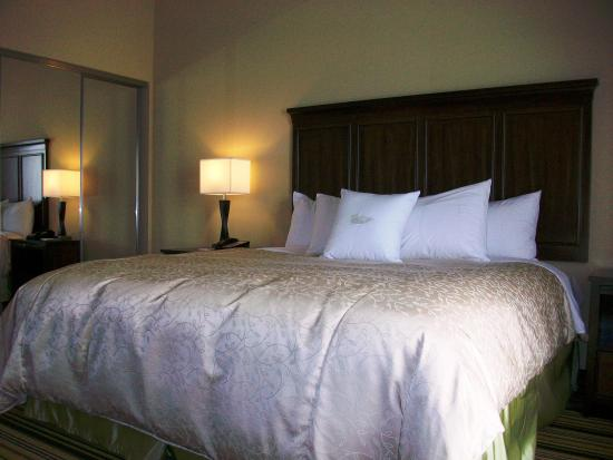 Homewood Suites Charlotte/Ayrsley: 1 King Suite