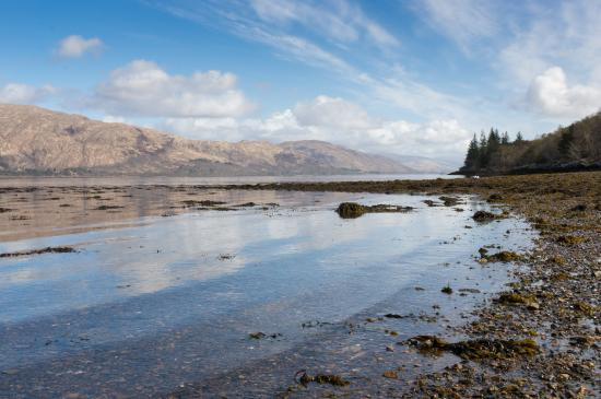North Ballachulish, UK: View from the FCS Loch Linnhe Picnic Area at Low Tide