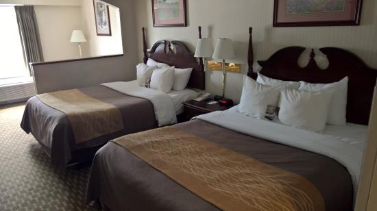 Comfort Inn Duncansville - Altoona Photo