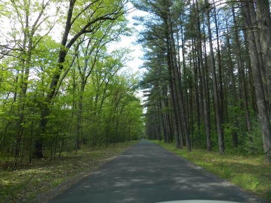 Carlisle, Pensilvania: A beautiful drive