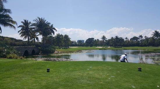 Ocean Palm Golf Course