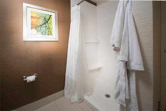 Fairfield Inn & Suites Idaho Falls: King Suite Shower