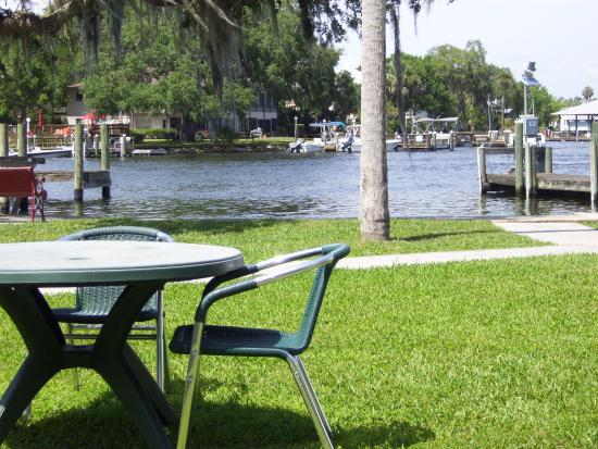 Homosassa Springs, FL: View from my Villa II patio