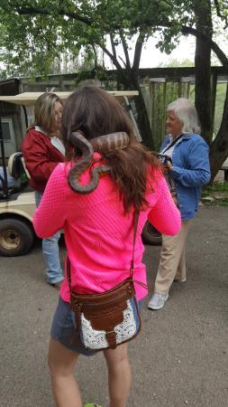 Horse Cave, KY: Snake handling