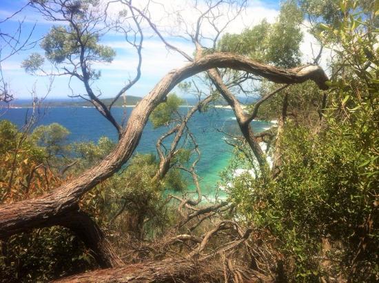Shoal Bay照片