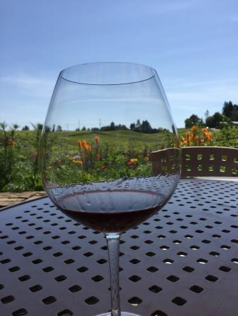 Lynmar Estate Winery: photo1.jpg
