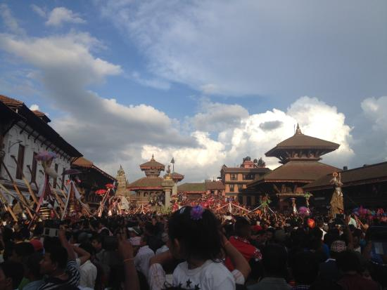 Shiva Guest House1 & 2: Cow festival 2015