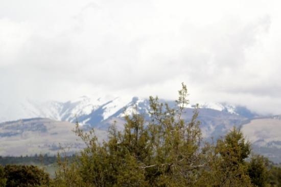 Foto de Sundance Bear Lodge