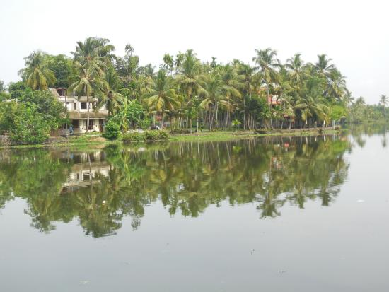 Aquaria The Boutique Resort : View of back waters from the hotel