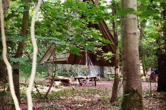 Chalfont St. Giles, UK: Bushcraft camp in a private Chilterns woodland in Buckinghamshire