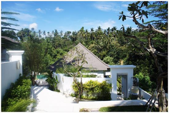 Lotus cloud villa picture of cloud nine estate ubud for Cloud 9 villas