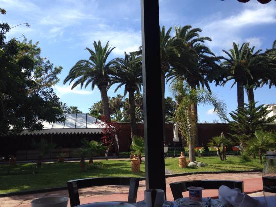 Art Suites El Jadida : Breakfast view!