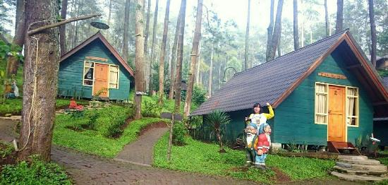 grafika cikole hotel camping updated 2019 campground reviews rh tripadvisor com