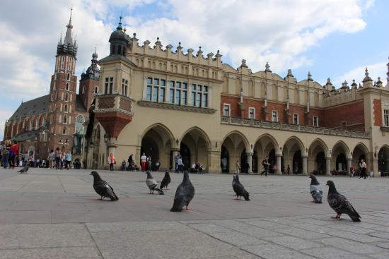 Krokow old town  Picture of Main Market Square Krakow  TripAdvisor