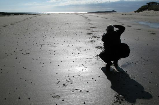 Northumberland Photo Training - sand