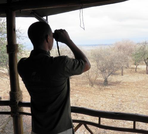 Lake Manyara National Park, Tanzania: In-house staff can help you identify some of the amazing birdlife