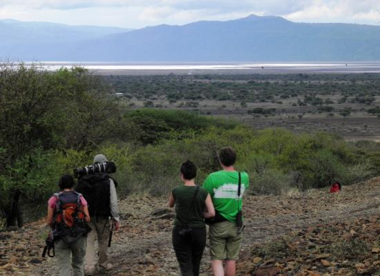 Lake Manyara National Park, Tanzania: Freedom to roam - nature bush walks on tap
