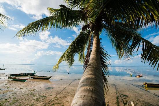 瓦卡托比岛照片