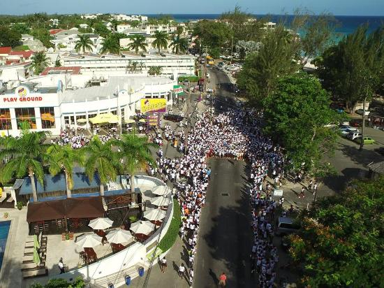 Rockley, Barbados: Start of large charity run recently, Swagg at left bottom of photo.