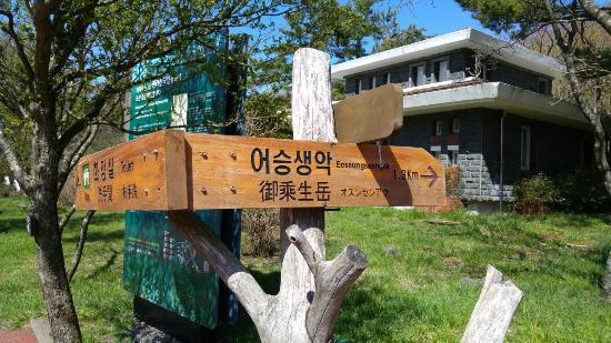 Hallasan National Park: 20160422_100152_large.jpg