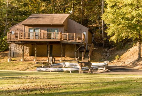 Buckhorn Lake State Resort Prices Reviews Ky Tripadvisor: Buckhorn Lake State Resort At Slyspyder.com