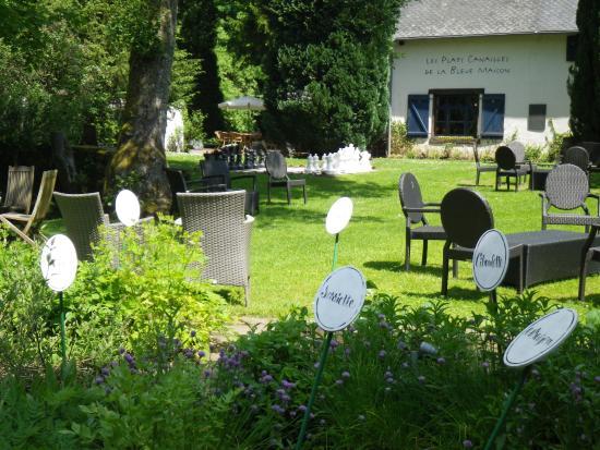 Habay-la-Neuve, Belgia: Jardin d'herbes