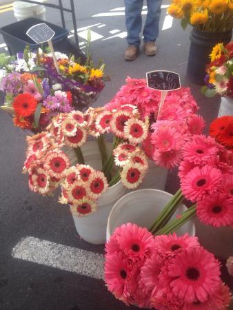 Carlsbad Village Farmers' Market