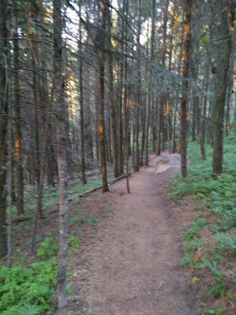Kamiak Butte County Park: IMG_20160519_195322_large.jpg