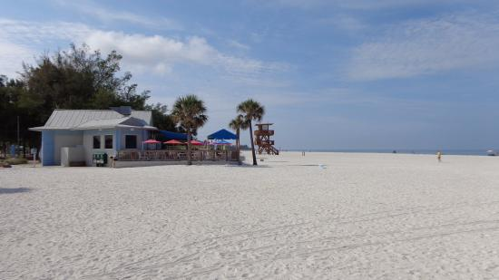 beach cafe - picture of coquina beach, bradenton beach - tripadvisor