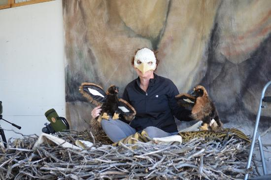Ramona, Kaliforniya: That's me sitting in a replica of a bald eagle nest