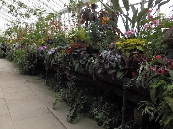Morpeth, UK: conservatory in the walled garden