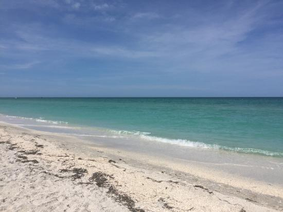 Boca Grande, FL: Incredibly relaxing beach. Not busy and free on street parking available