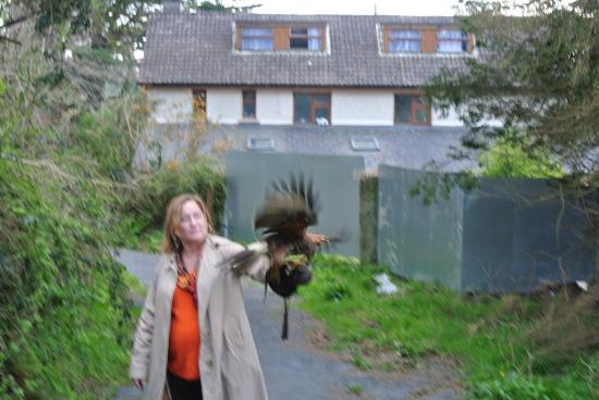 Kilmacthomas, Ирландия: photo4.jpg