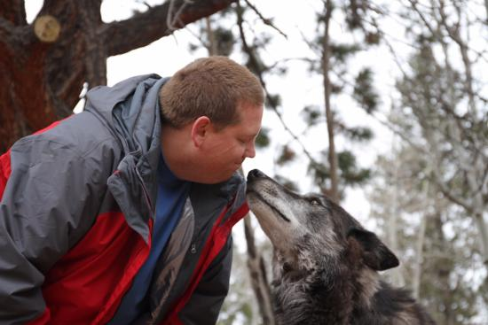 Divide, CO: Wolf Kisses!