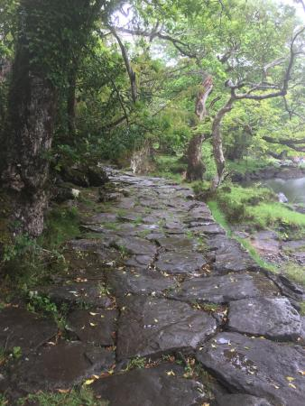 Gap of Dunloe: This tour would be magnificent on a sunny dry day.  Unfortunately it was windy and raining sidew