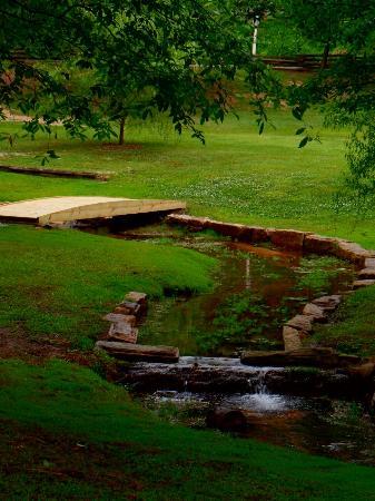 North Augusta, Karolina Południowa: SAM_0193_large.jpg