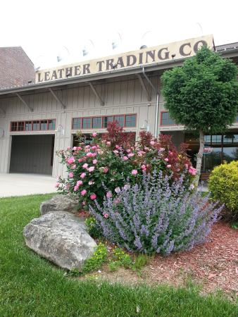 ‪Leather Trading Co‬