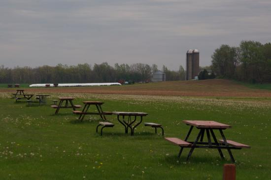Shelby, OH: Picnic tables, with neighboring farmland in the background.