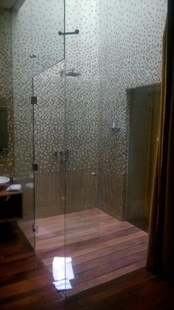 Boutique Hotel de Cortes: The shower. The lone redeeming attribute of the room.