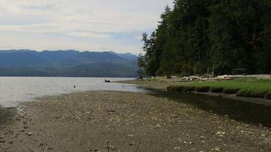 Seabeck, WA: Beach looks out onto Hood Canal