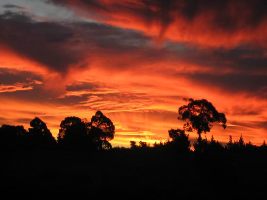 Upper Moutere, Nueva Zelanda: Sunset from property