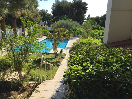 Myrto Hotel: Pool and grounds