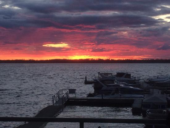 Fenelon Falls, Canada: Perfect view while enjoying wing night !