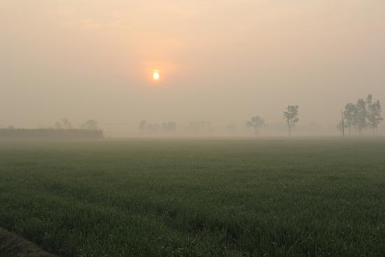 Фотография Район Гурдаспур