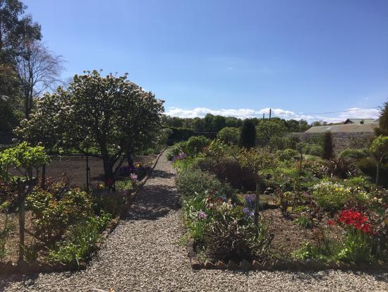 Aberlady, UK: Walled garden