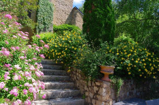 Saint-Brice, France : fleurs parc